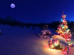 Christmas -  Lights